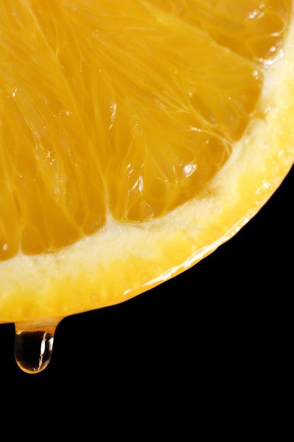 Juicy oranges royalty free stock photography