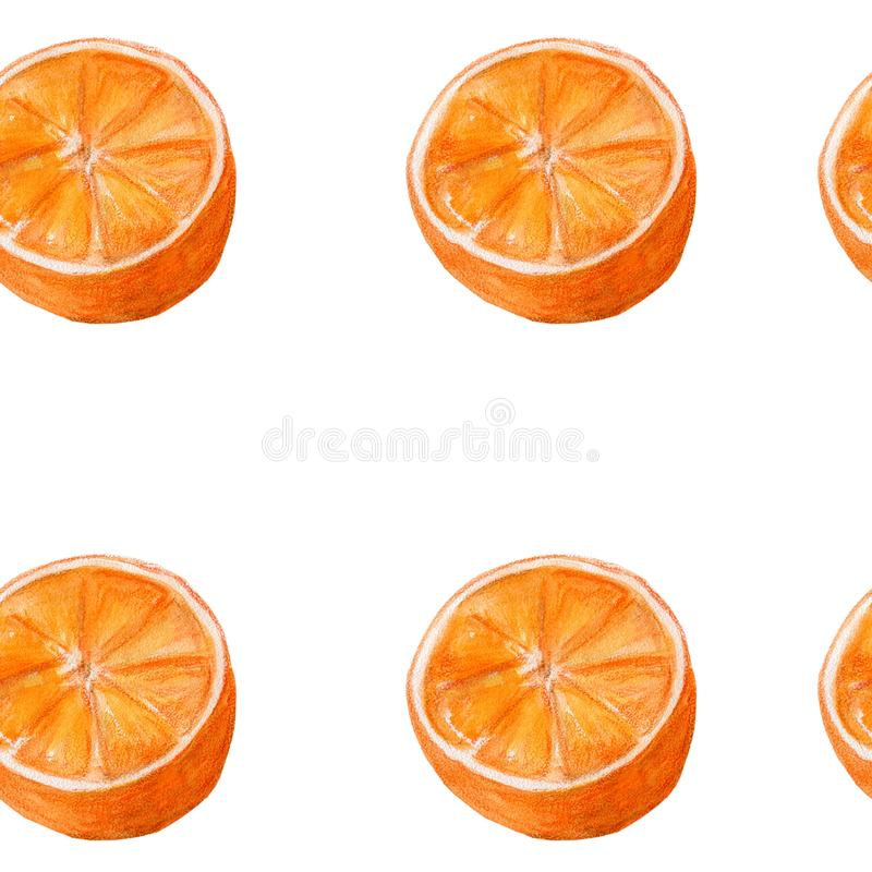 Juicy oranges watercolor art. Hand drawn seamless pattern with citrus fruit on the white background. Juicy oranges hand drawn watercolor seamless pattern with vector illustration