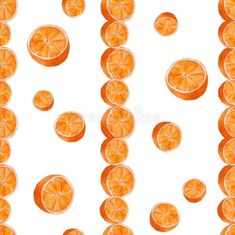 Juicy oranges watercolor art. Hand drawn seamless pattern with citrus fruit on the white background. Juicy oranges hand drawn watercolor seamless pattern with royalty free illustration