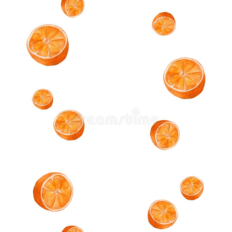 Juicy oranges watercolor art. Hand drawn seamless pattern with citrus fruit on the white background. For used on card, wallpaper, poster, banner, panel or royalty free illustration