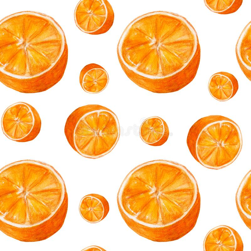 Juicy oranges watercolor art. Hand drawn seamless pattern with citrus fruit on the white background. Juicy oranges hand drawn watercolor seamless pattern with stock illustration