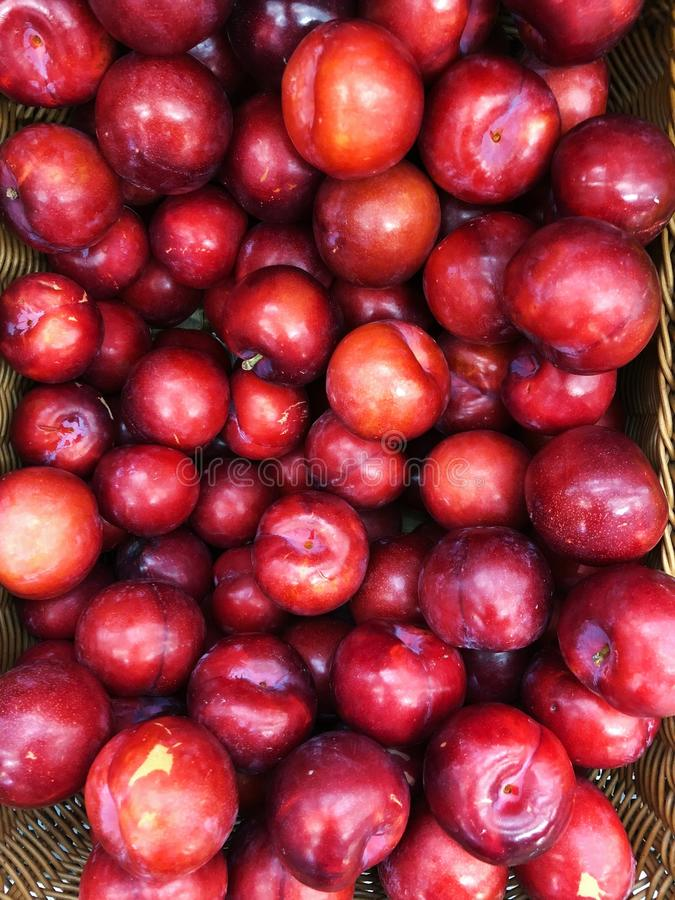 Juicy red tasty plum on the market. View stock images