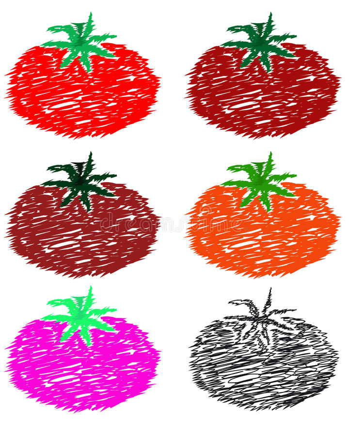 Download Juicy red tomato. stock vector. Image of graphics, green - 25360054