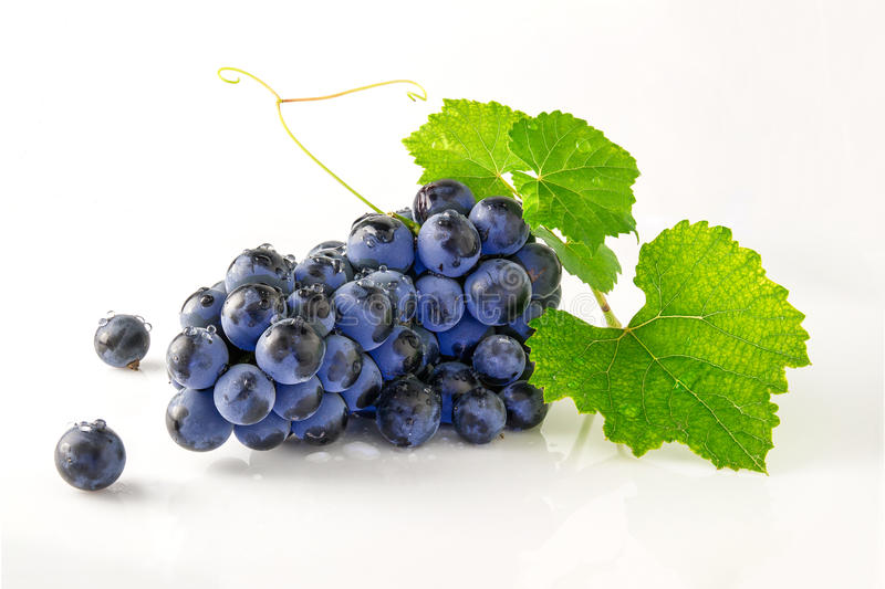 Juicy ripe and delicious grapes royalty free stock photo
