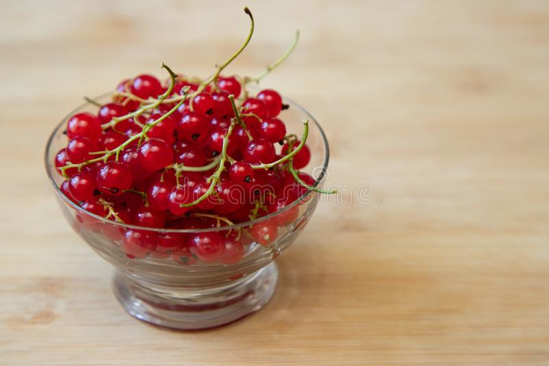 Juicy and ripe red currants in a small glass bowl, a cup stands on a light wooden background. Copy space royalty free stock image
