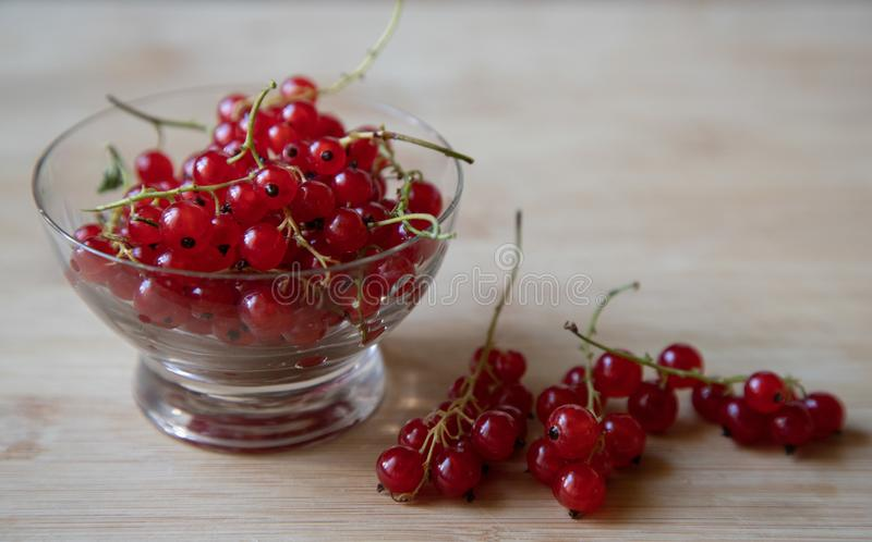 Juicy and ripe red currants in a small glass bowl, a cup stands on a light wooden background. Nearby are several branches of royalty free stock photography