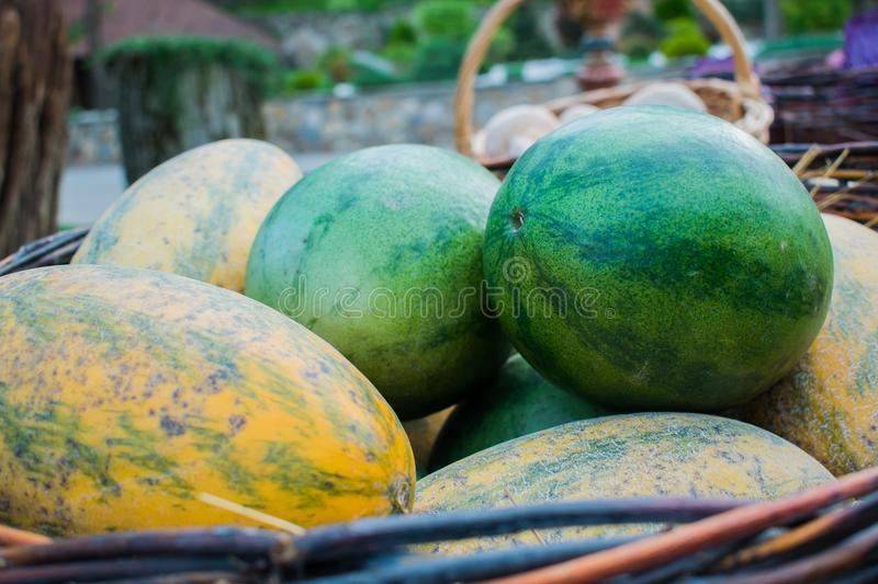Juicy and ripe summer great berries and fruits. Watermelons are green and melons are yellow in a pile on the open air stock photography