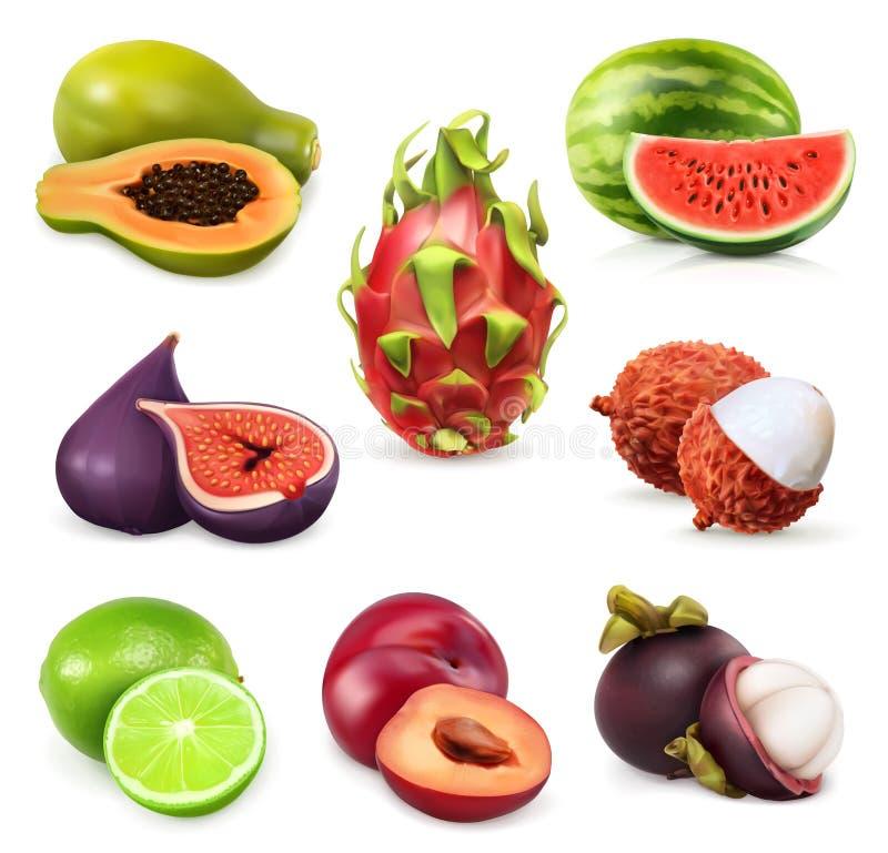 Juicy ripe sweet fruits vector illustration