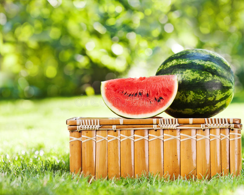Juicy slice of watermelon on picnic hamper. Juicy slice and watermelon on picnic hamper against natural green background in spring stock photos