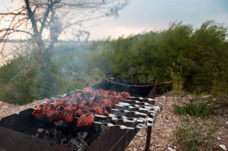 The juicy slices of meat with sauce prepare on fire outdoors (shish kebab). royalty free stock photos