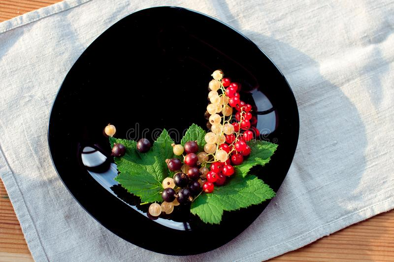 Juicy tasty red black and white currant, which is a bunch on a black  plate stock photography