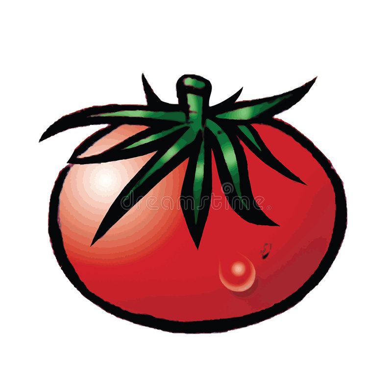 Download Juicy Tomato Royalty Free Stock Image - Image: 6661196