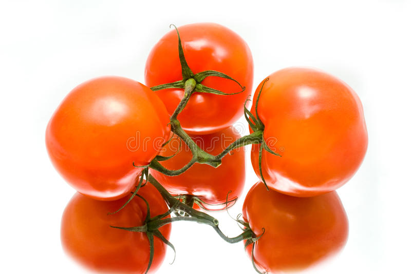 Download Juicy Tomatoes Are In A Reflection Stock Image - Image: 12468557