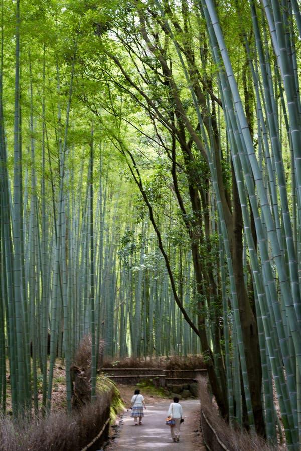 Juin 2012 : Arashiyama, Kyoto, Japon : Un chemin en bambou regardant vers le chemin photos stock