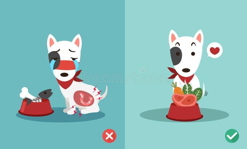 Juiste en verkeerde manieren om honden te voeden royalty-vrije illustratie