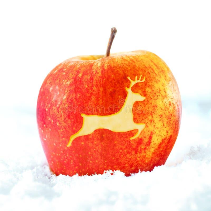 Juläpple med renen royaltyfri foto