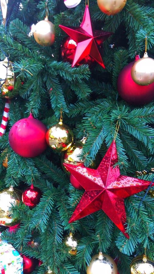 Jul är den mest magiska tiden av året Let's aktie magin med de denna hela säsong och i det nya året arkivbild