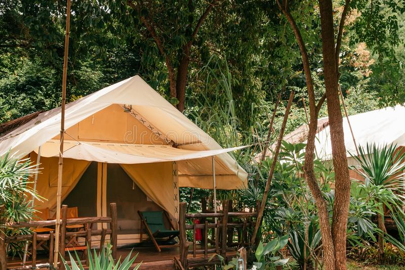 Luxurious camping resort in nature forest, glamping vacation in stock photo