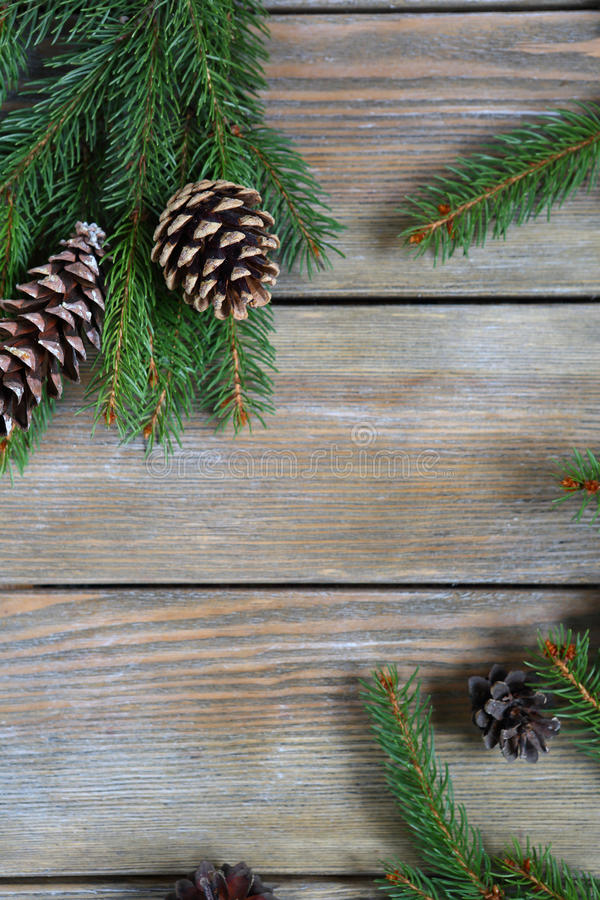 Jul sörjer filialen med kottar på bräden arkivfoto