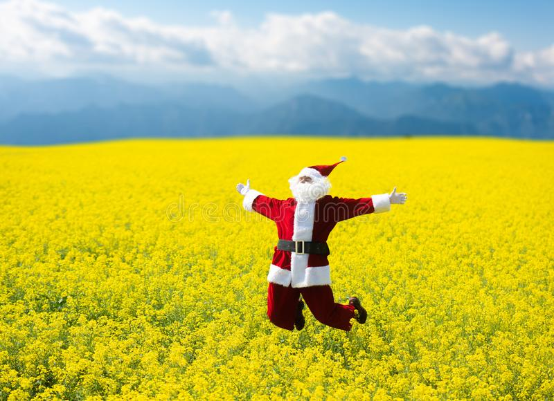 Jul Santa Claus som hoppar, i att blomma det gula fältet royaltyfria foton