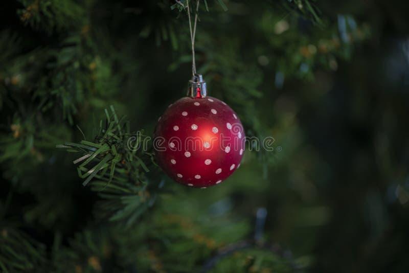 Jul struntsak, stjärnor, träd, klocka, bollar, snögubbe, hjortar och olika prydnader arkivfoton