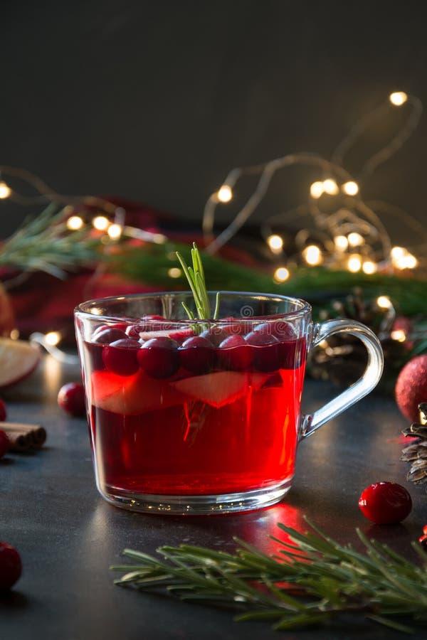 Jul tranbär och äpple funderade vingarneringrosmarin och granfilialer på svart Xmas-drink arkivfoto