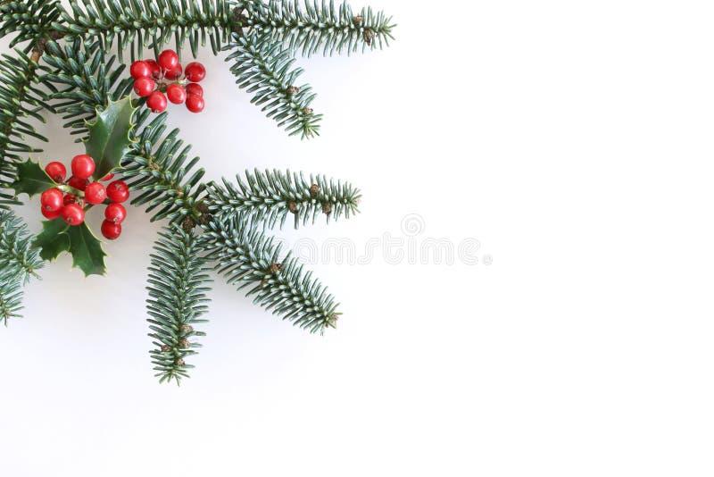 Jul utformade sammansättning, den dekorativa ramen, baner Sidor för gräsplan för järnekträd, röda bär, filialer och grön gran arkivbild