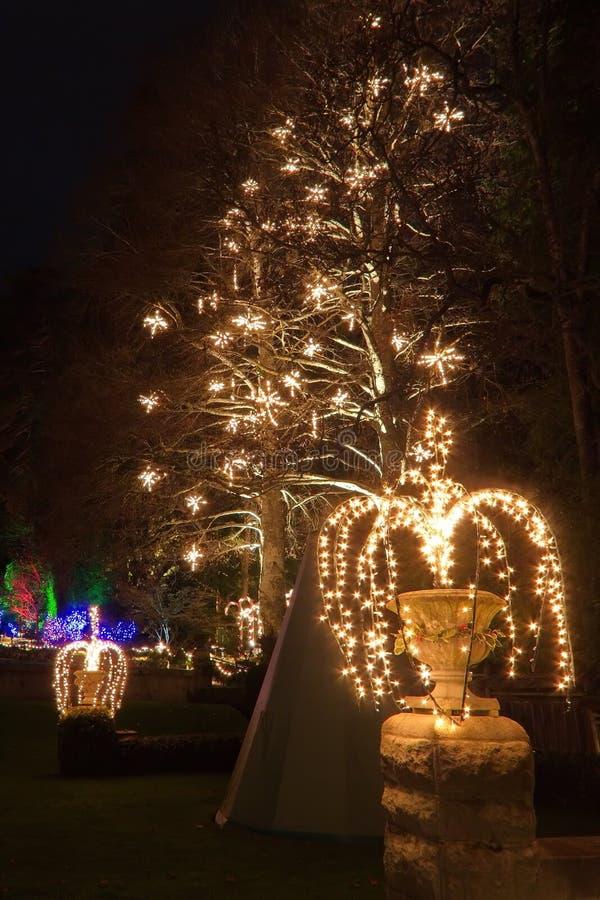 Julafton i Butchart trädgårdar arkivbilder