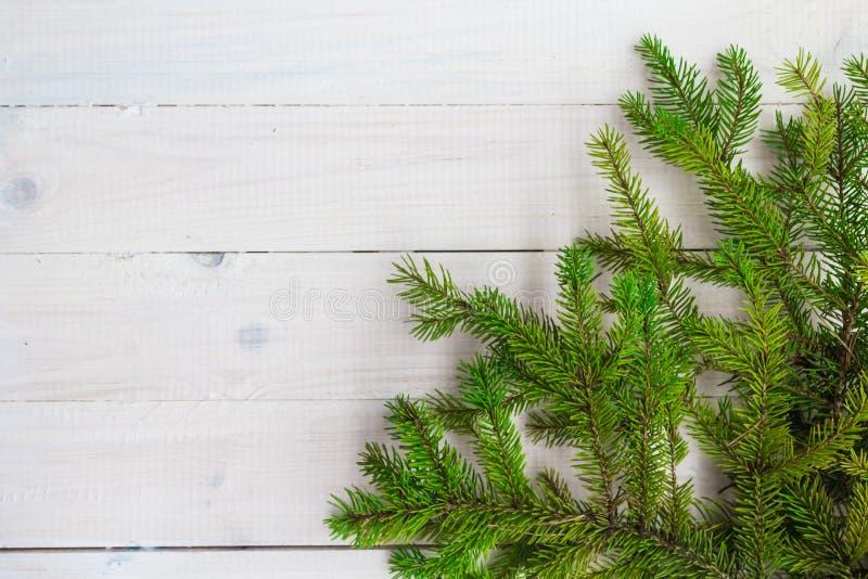 Julbakgrund gör grön prydlig trärisvit arkivbild