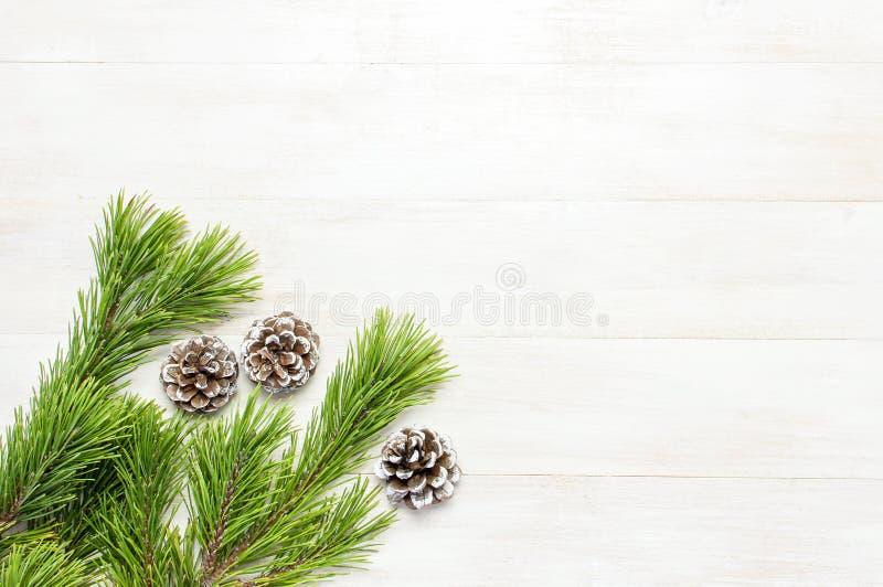 Julbakgrund, gräsplan sörjer filialer, kottar som dekoreras med snö på den vita trätabellen Idérik sammansättning med gränsen och arkivfoton
