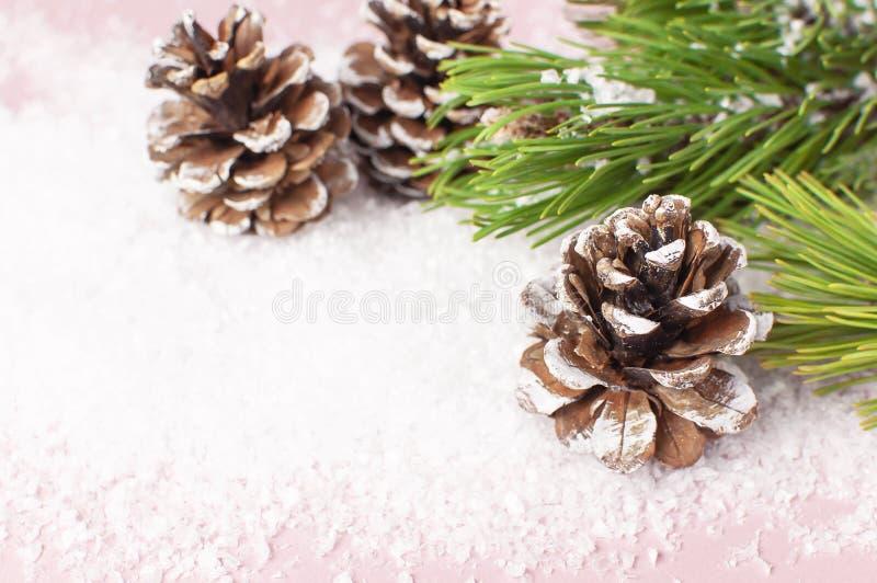 Julbakgrund, gräsplan sörjer filialer, kottar som dekoreras med snö på snöig rosa bakgrund Idérik sammansättning med gränsen royaltyfri bild
