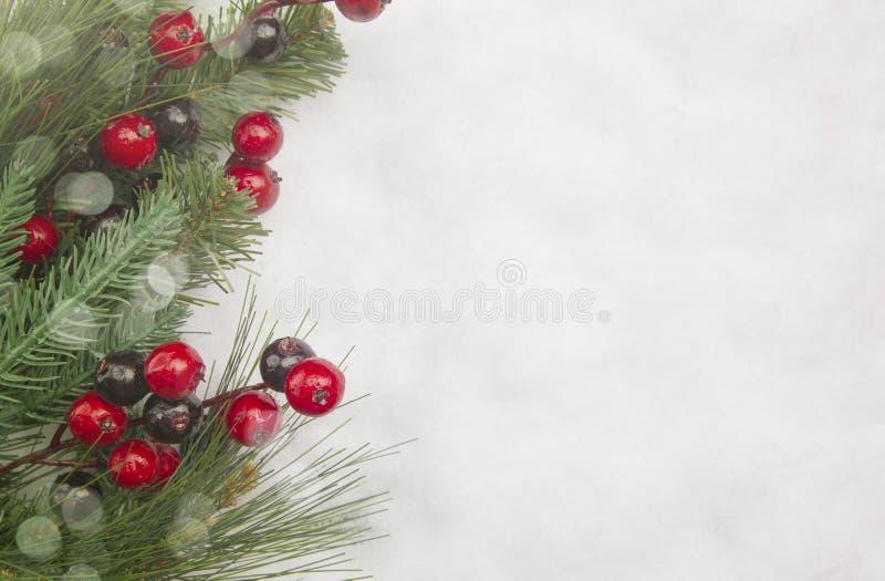 Julbakgrund med en trädfilial och en ny stupad snö fotografering för bildbyråer