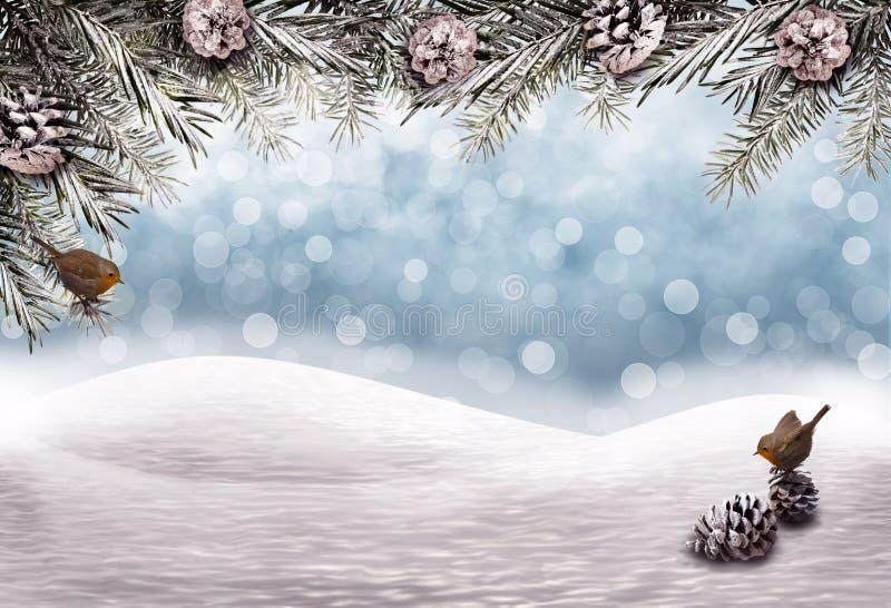 Julbakgrund med snöfältet, granfilialer och fåglar vektor illustrationer