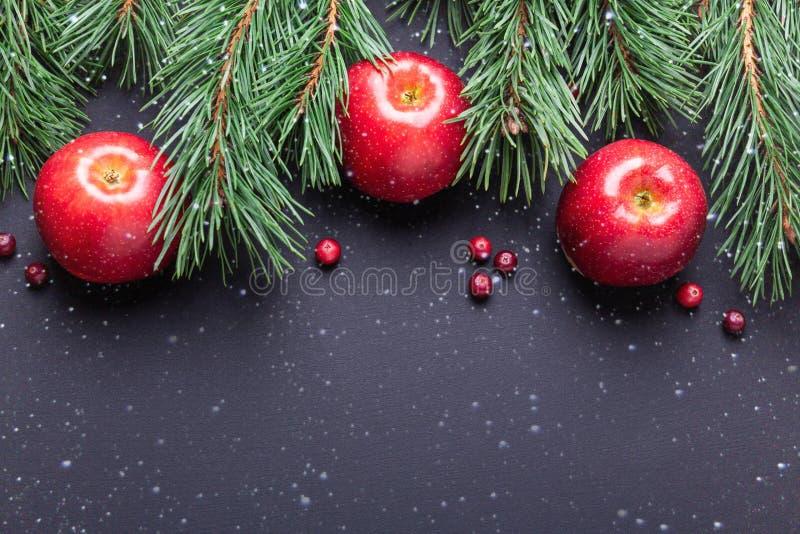 Julbakgrund med trädfilialer, röda äpplen och tranbär Mörk trätabell arkivbilder