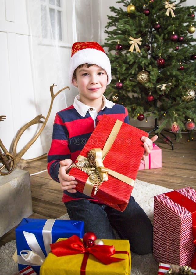 Julchikd med den närvarande asken arkivfoton
