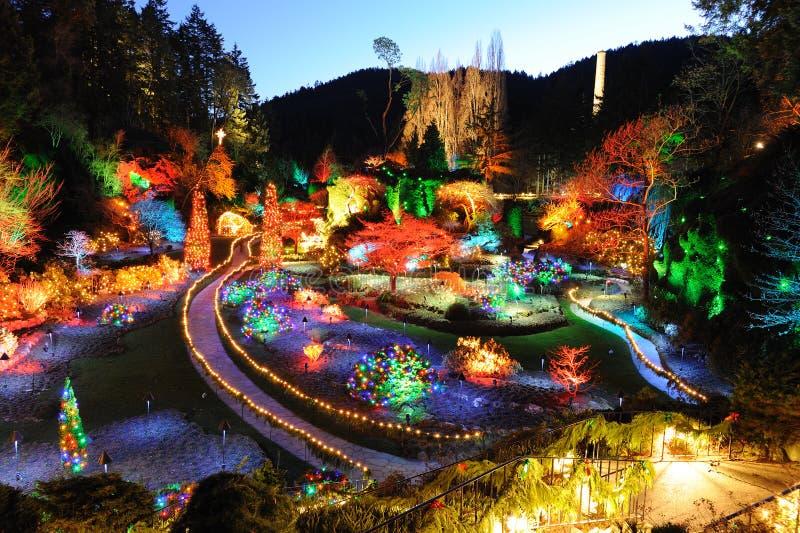 julen arbeta i trädgården lighting royaltyfri foto
