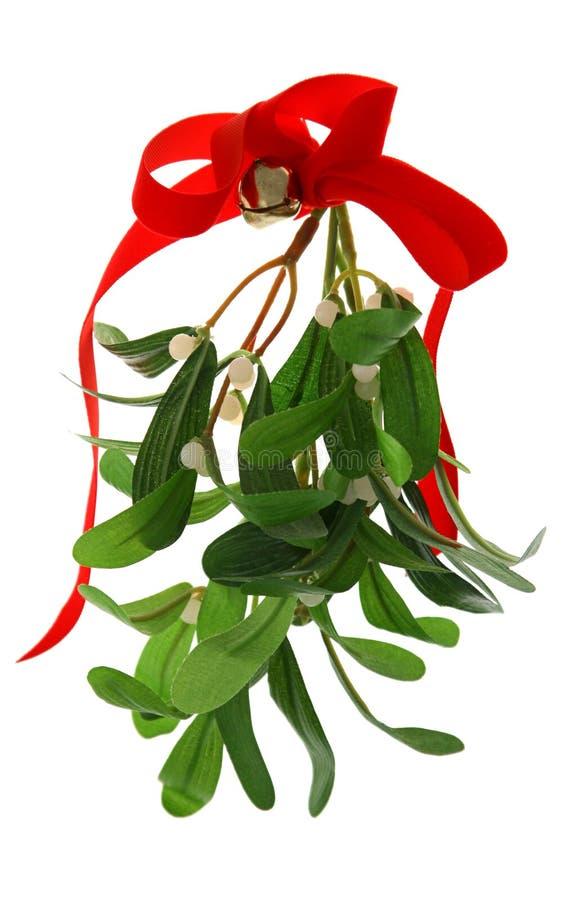 julen isolerade mistletoen arkivbild