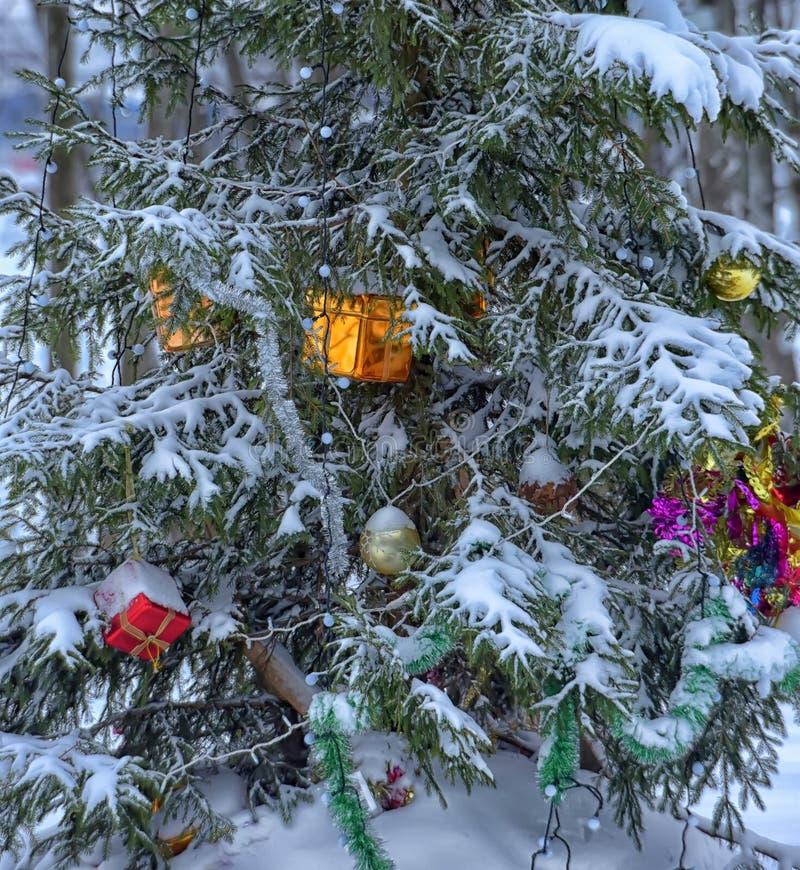 julen räknade snowtreen royaltyfria bilder
