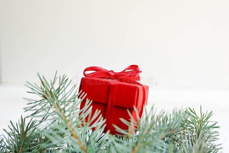 Julgåvan, sörjer kottar på vit bakgrund Lekmanna- l?genhet, b?sta sikt, kopieringsutrymme royaltyfria foton