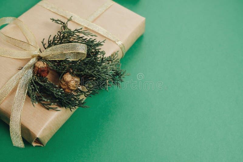 Julgåvan, sörjer kottar, thuja förgrena sig på grön bakgrund F royaltyfri fotografi