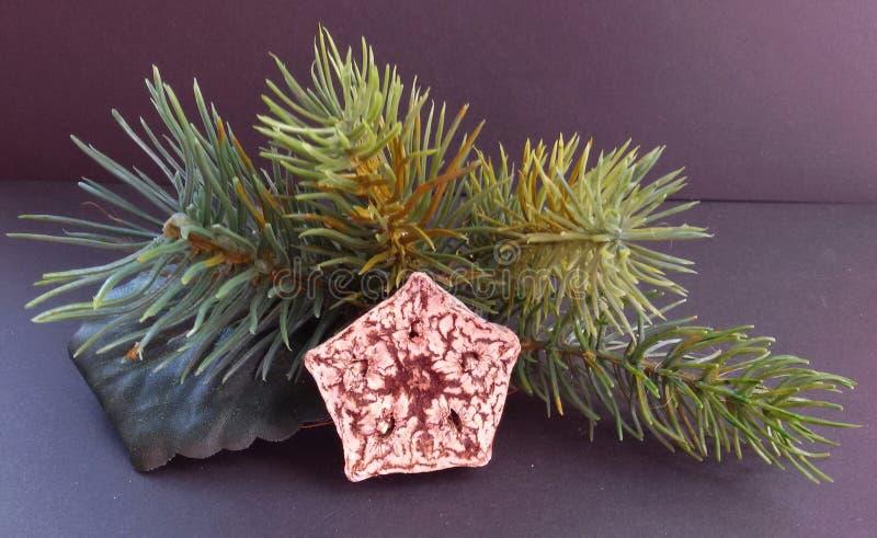 Julgarnering med olika prydnader Härlig festlig dekor arkivbild