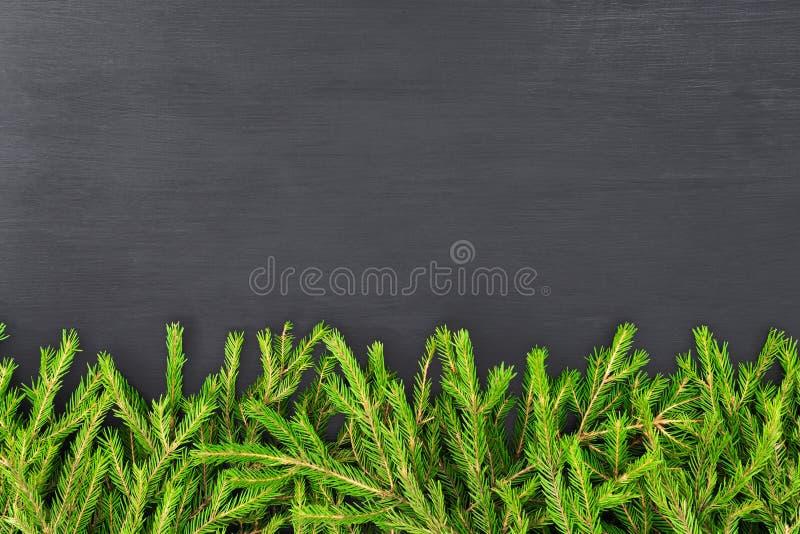Julgr?nsen som g?ras av naturliga grantr?dfilialer p? svart, plant l?gger modellen f?r restaurangmeny arkivbild