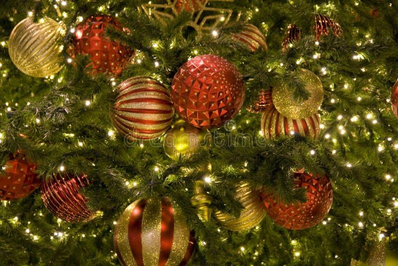 Julgran royaltyfria bilder
