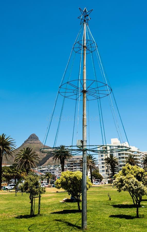 Julgran bredvid havet i Cape Town, Sydafrika Berg för huvud för lejon` s på bakgrunden royaltyfria foton