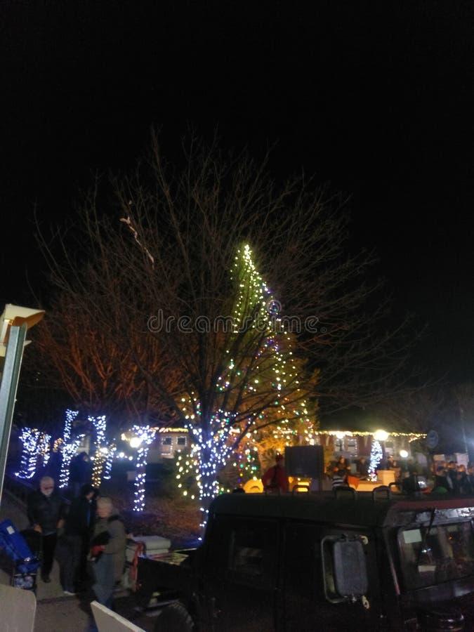 Julgran i i stadens centrum Lafayette Indiana royaltyfria bilder