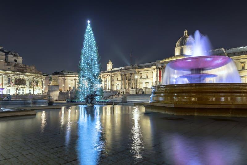 Julgran i Trafalgar Square i London, UK fotografering för bildbyråer