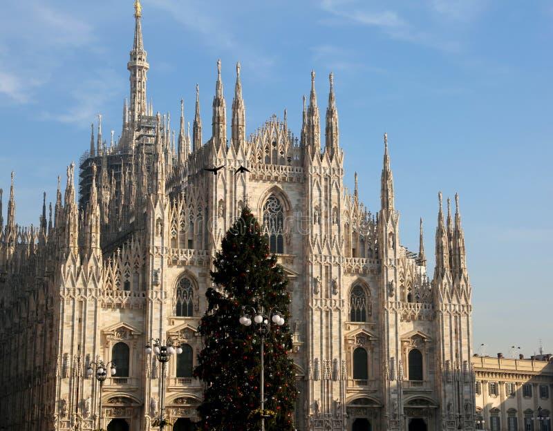 Julgran med bollar och fasaden av den fantastiska Catheden arkivbild