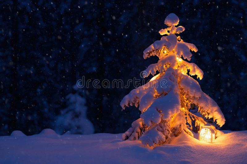 Julgran med en lykta i det insnöat träna royaltyfria foton