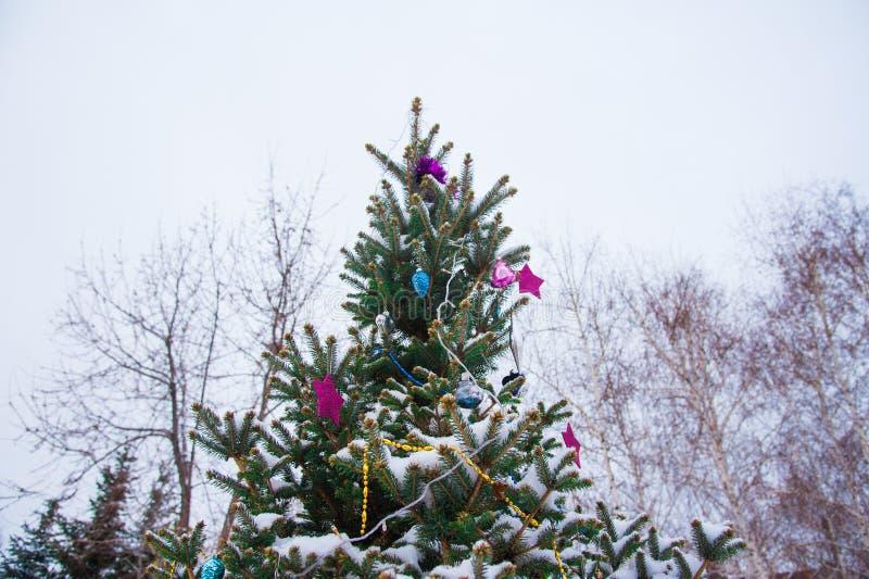 Julgran med garnering under snö arkivfoto