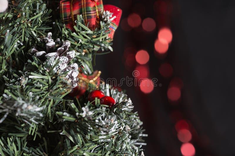 Julgran med pinecone royaltyfria foton